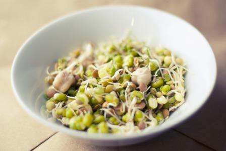स्प्राउट: प्रोटीन का उत्तम स्त्रोत जो स्वास्थ्य हेतु लाभदायक