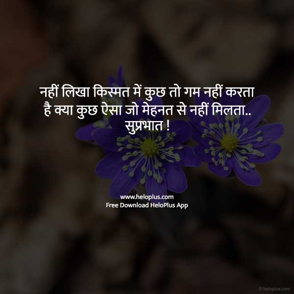 friend good morning quotes in hindi